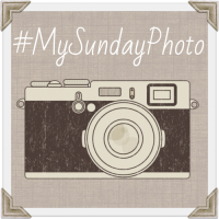 My-Sunday-Photo1
