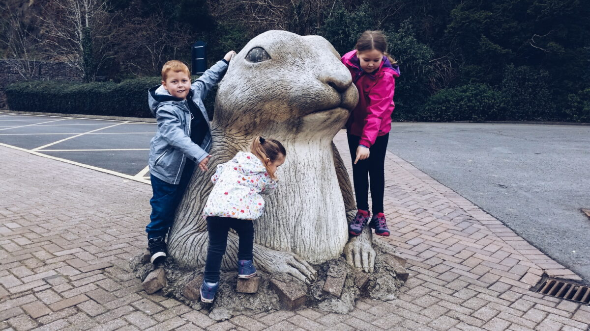 A visit to Belfast Zoo
