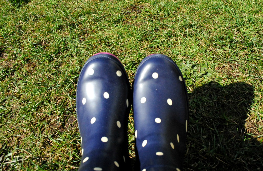 Joules welly boot