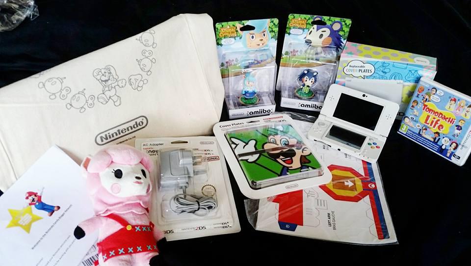 Nintendo family ambassador