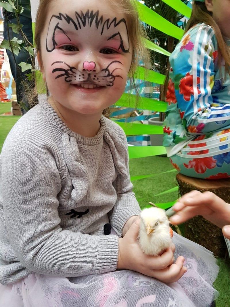 MAC Belfast petting zoo