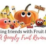 100% Organic fruit snacks